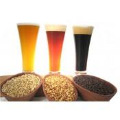 Cerveza Artesanal (0)