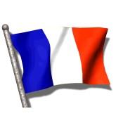 Comprar cerveza francesa  (4)