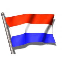 Comprar cerveza holandesa