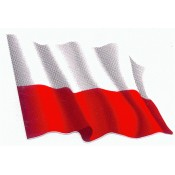 Comprar cerveza polaca  (2)