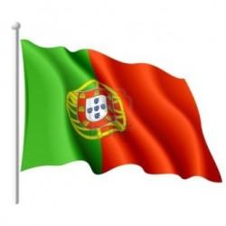 Comprar cerveza portuguesa