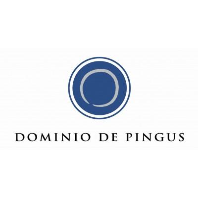 Bodega Dominio de Pingus