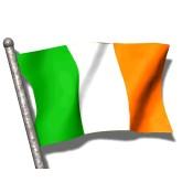 Cerveza Irlandesa (1)
