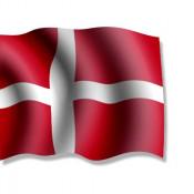Cerveza Danesa (0)