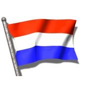 Cerveza Holandesa (19)