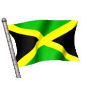 Cerveza Jamaicana (1)